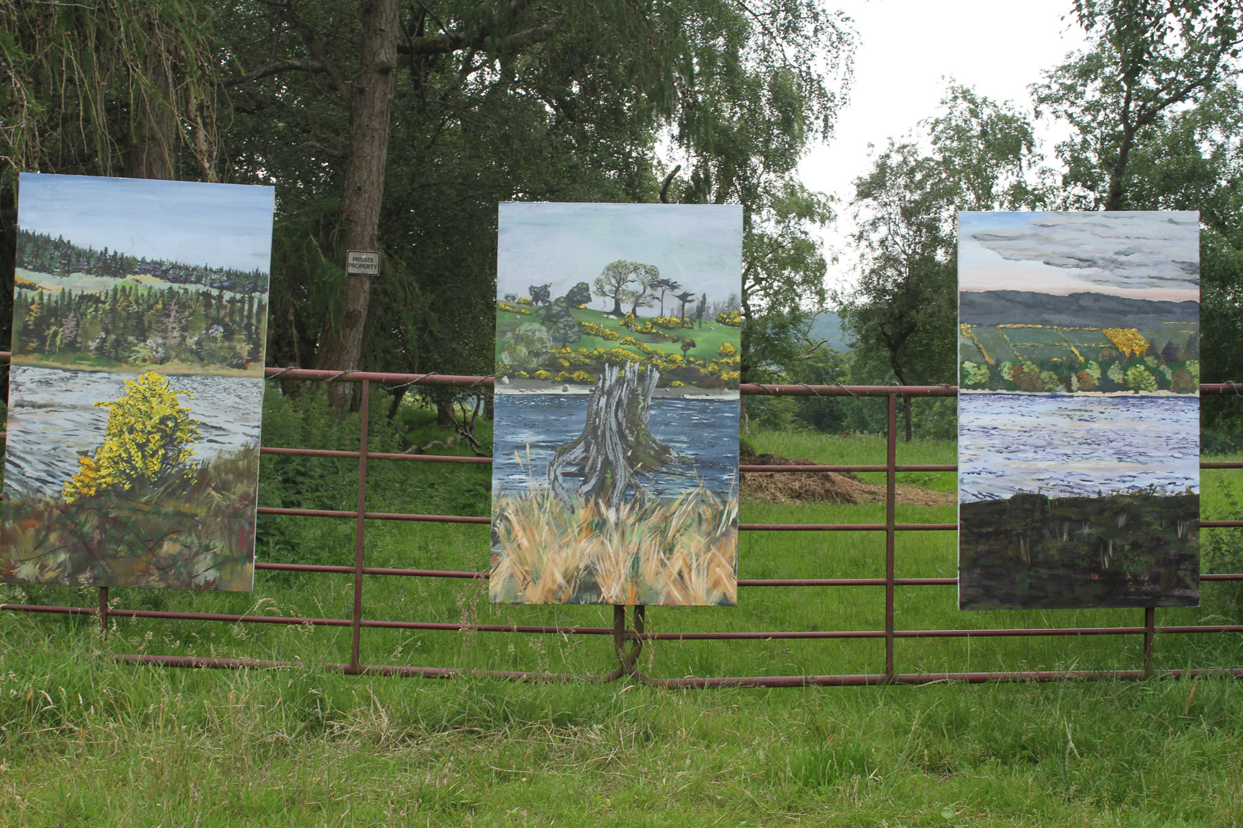 Paintings installed for the in ait exhibition in Valleymount, Wicklow, 2020